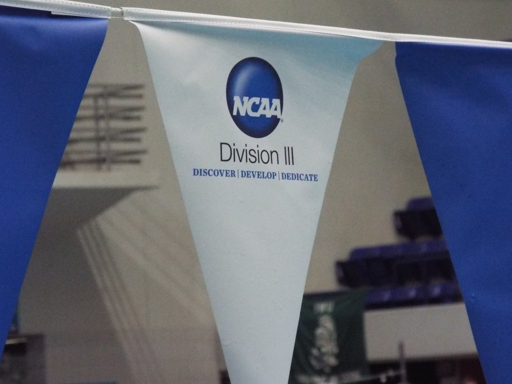 NCAA Division III Flags 2014