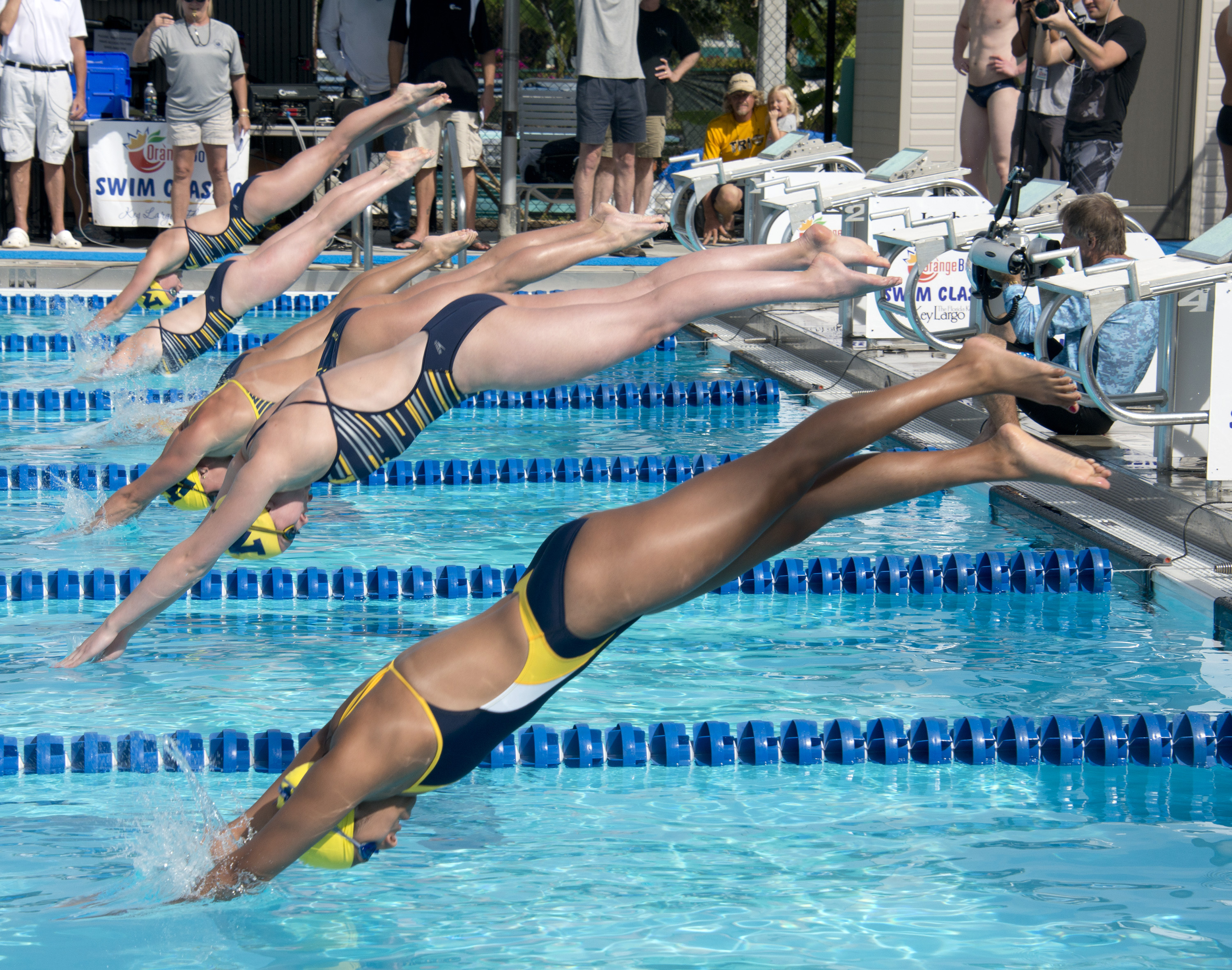 collegiate swimmers leap off the starting blocks for the 50 meter womens freestyle event saturday