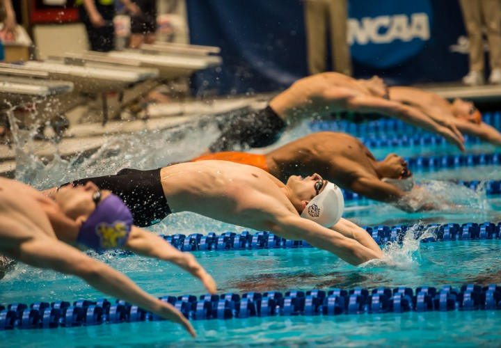 ncaa division 2 swimming meet results track