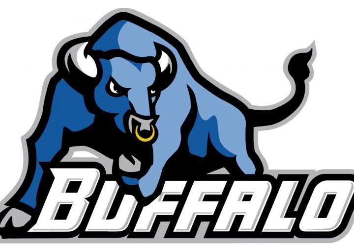 Image result for suny buffalo mascot