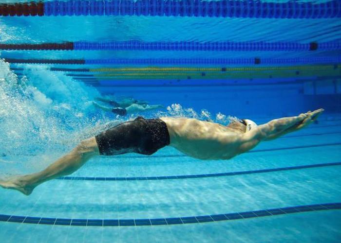 Underwater Dolphin 5 Scientific Technique Tips