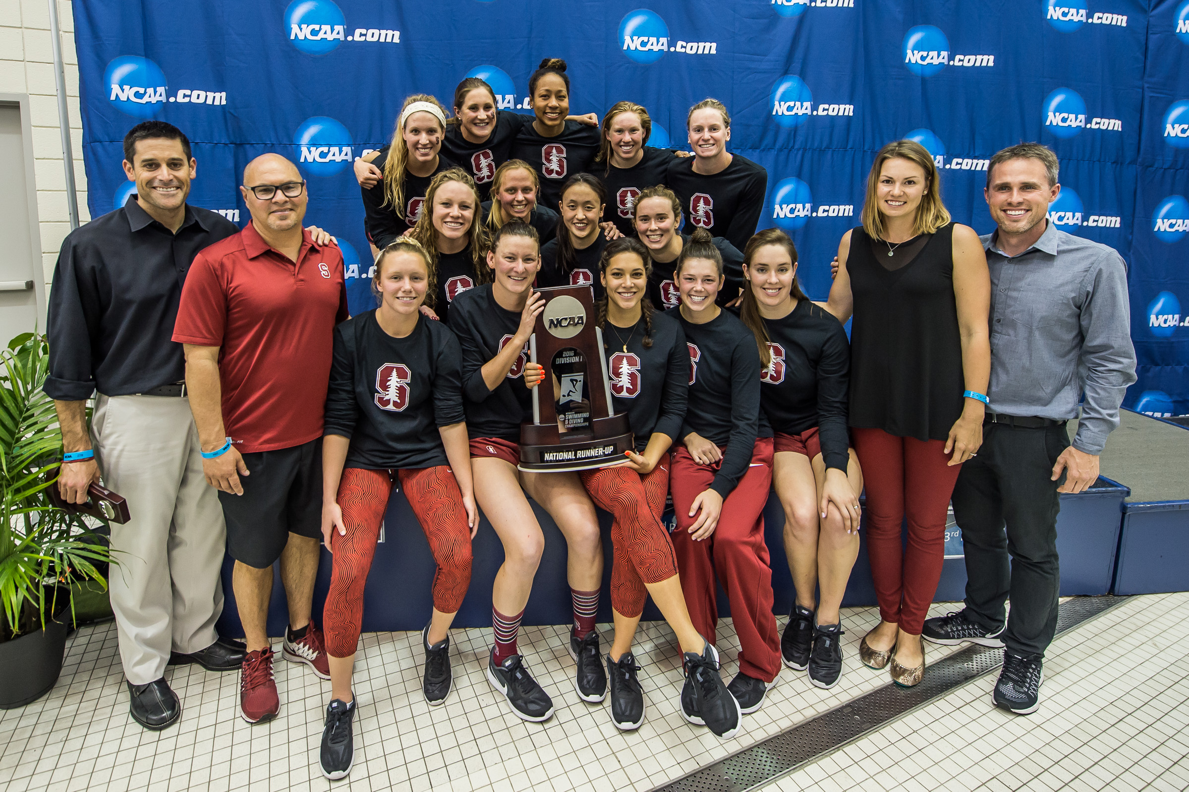 Stanford Second Place 2016 Ncaa Womens Swimming 3648 Swimming World News