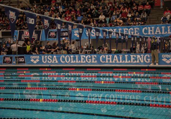 Image result for usa swimming college challenge