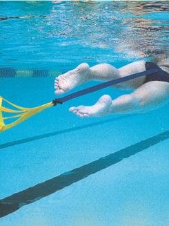 Strechcordz Archives Swimming World News