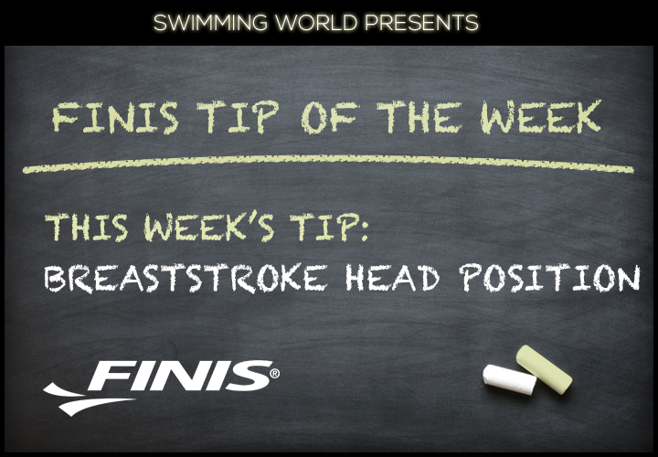 Breaststroke Head Position