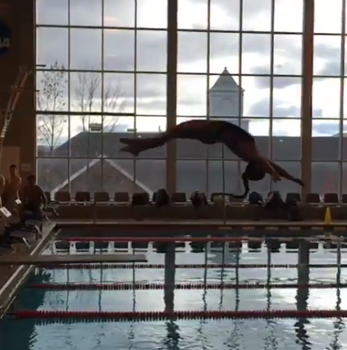 Hartwick Diving