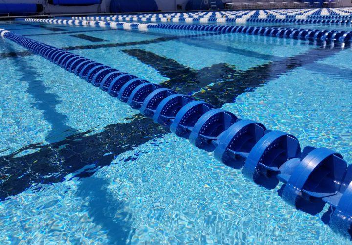 st xavier swim meet