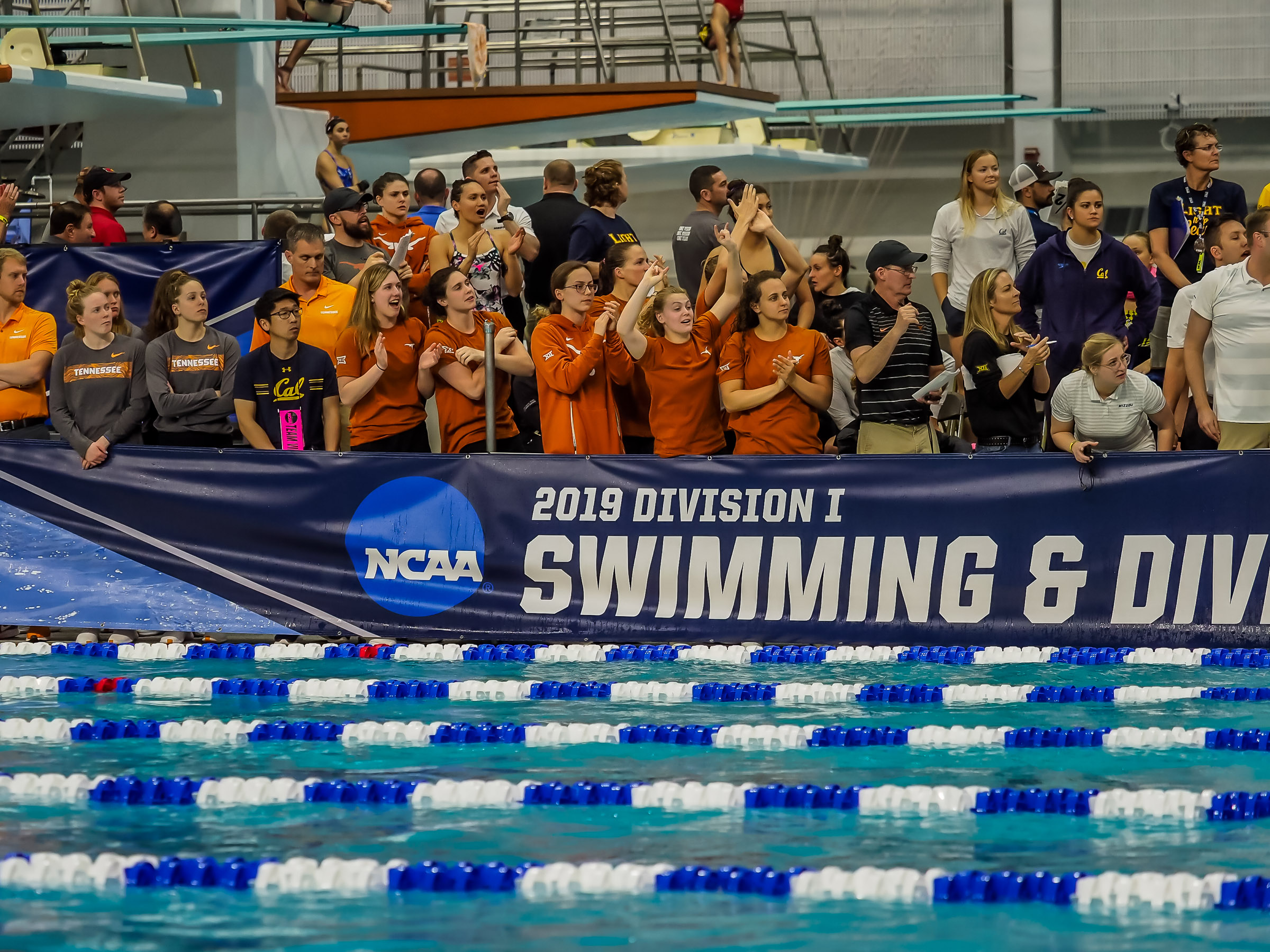 2019 NCAA Division I Women's Swimming Championships: Day Four Prelims Photo Gallery - Swimming World News