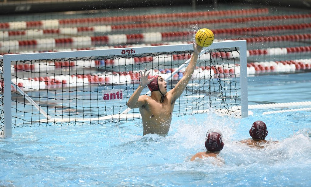 Twenty-seven and 0? Wow! But Harvard Men's Water Polo Has More to Prove - Swimming World Magazine